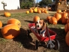 kody-monster-pumpkin-patch