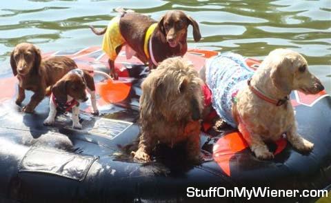 Wiener raft.