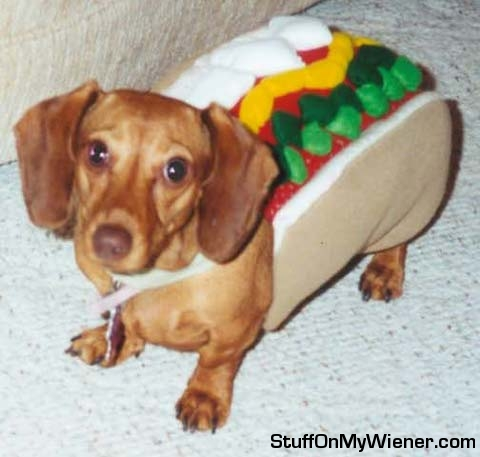 Hot Dog We Have A Wiener
