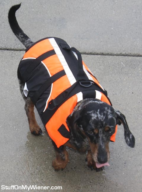 Abbey with a life vest.