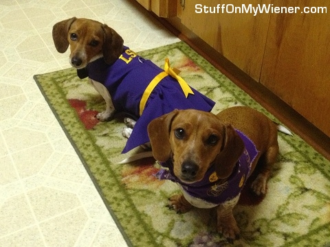 Sadie and Penny dressed as LSU cheerleaders.