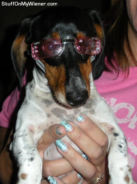 Squeak in doggles.