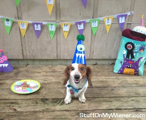Kody with birthday hat.
