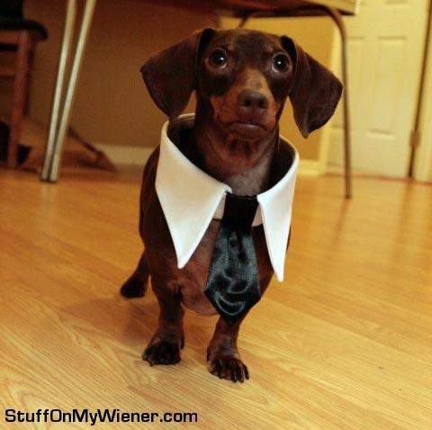 Steve in a tie.