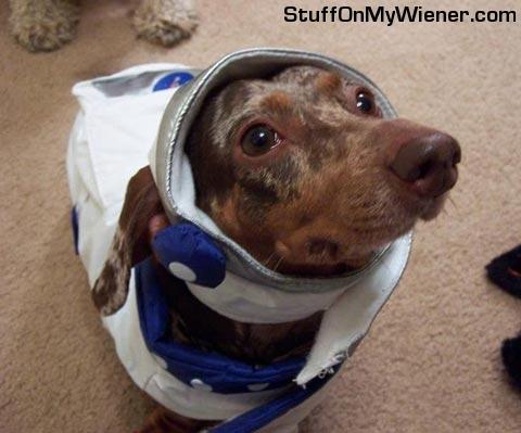 Izzy as an astronaut.