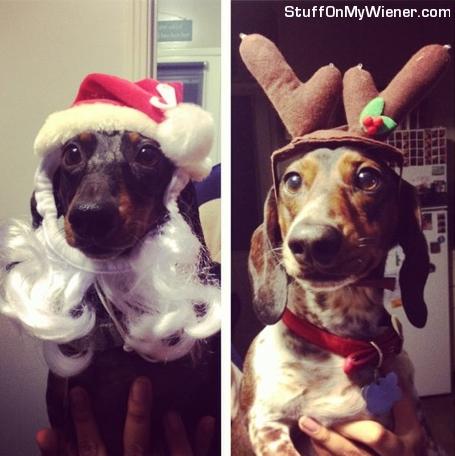 Reggie and Charlie Santa and Reindeer.